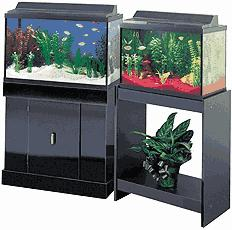 We sell Aquariums of all descriptions